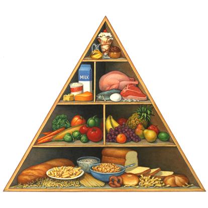 th-food groups & still life