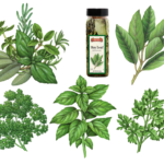 Italian herbs including bay leaves, basil, curley parsley and flat leaf parsley