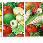 Salsa ingredient illustrations for Wal-Mart.