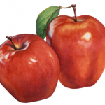 Fruit painting of two Red Delicious apples.