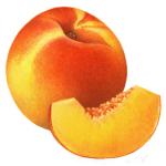 Whole peach and slice