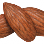Three whole almonds without shells
