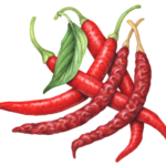 Three red fresh arbol peppers with two dried arbol peppers and a leaf.