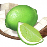 Coconut piece with a whole lime and a lime wedge