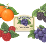 Blackberries, grapes, raspberries and oranges