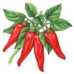 Red paprika peppers on a branch with leaves