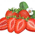 Two whole strawberries and four strawberry slices with strawberry leaves and flower