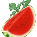 Watermelon whole cut wedge with watermelon leaf