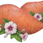 Two whole sweet potatoes with pink flowers and leaves.