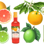 Grapefruit and lime illustrations.